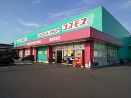 ディスカウントドラッグコスモス屋島西町店