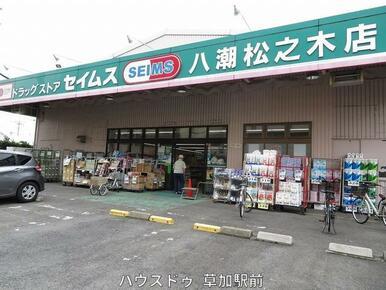 セイムス八潮松之木店