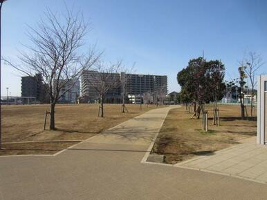 東松戸中央公園
