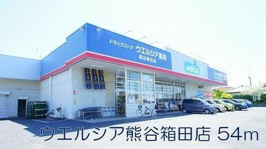 ウェルシア熊谷箱田店