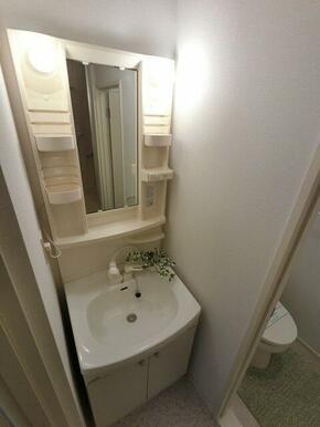 便利なハンドシャワー付き