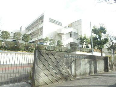 鴨志田緑小学校