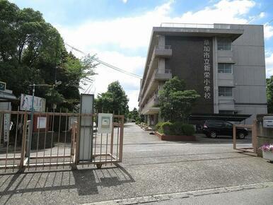 新栄小学校