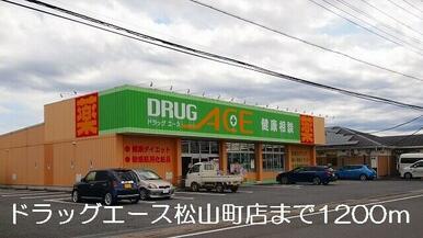 ドラッグエース松山町店