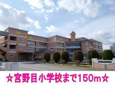 宮野目小学校
