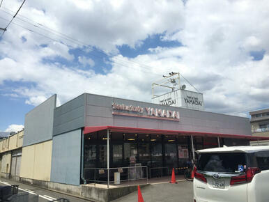 ヤマダイアオヤマ店