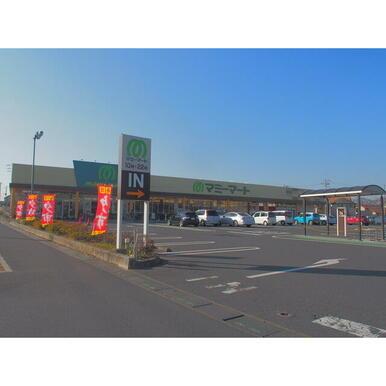 マミーマート栗橋店、カスミ大利根