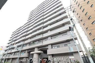 谷塚駅より徒歩15分!大切なペットと暮らせるマンションです♪