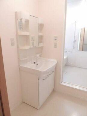シャワー付きの洗面台でお掃除も楽々。広めのボウルで毎日の支度も楽しく出来そうです