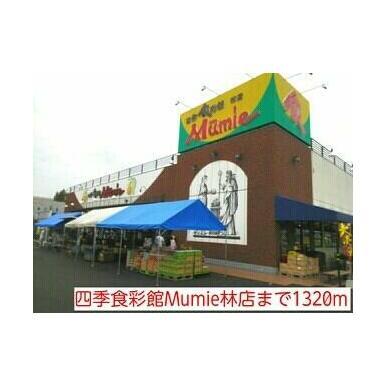 四季食彩館Mumie林店