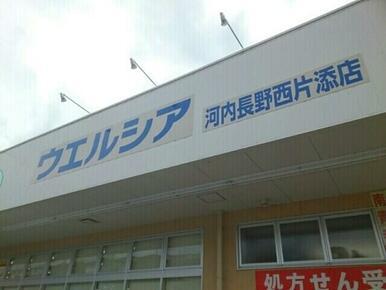 ウエルシア河内長野西片添店様