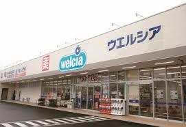 ウエルシア深谷上野台2号店