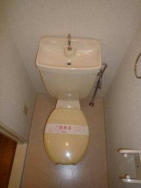 手洗い付の水洗トイレ♪