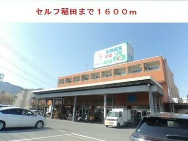セルフ稲田