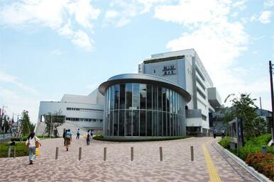 私立日本大学藝術学部