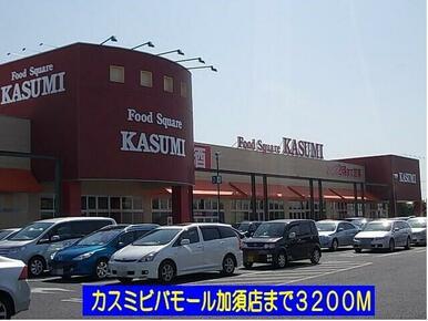 カスミビバモール加須店