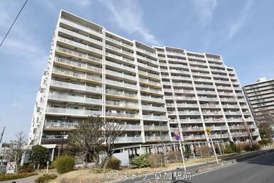 獨協大学前駅より徒歩3分のリノベーションマンション!