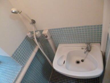 シャワーと洗面台