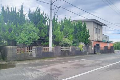 大野原町青岡の土地。敷地内に電柱が1本あります。