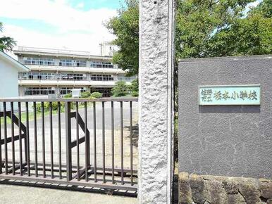 栃本小学校