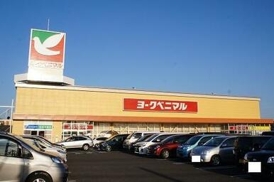 ヨークベニマル遠見塚店