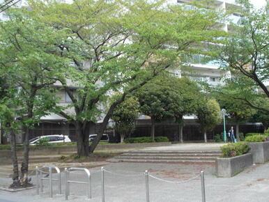 緑地第2号栄町サン緑地