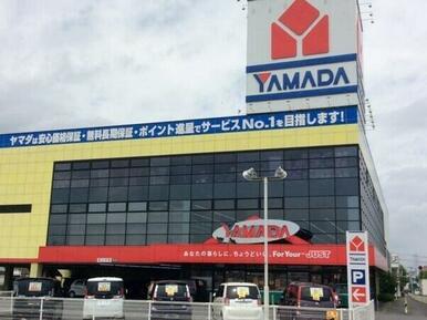 ヤマダ電機本庄店