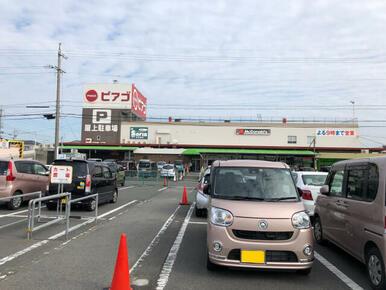 ピアゴ井ケ谷店