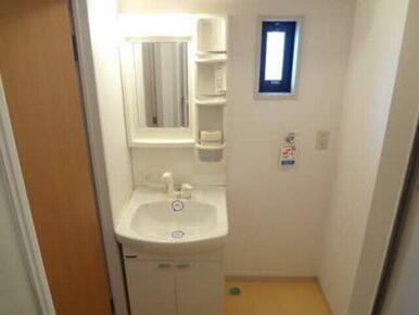 洗面化粧台はシャワー付き。洗濯機置き場も横にあります