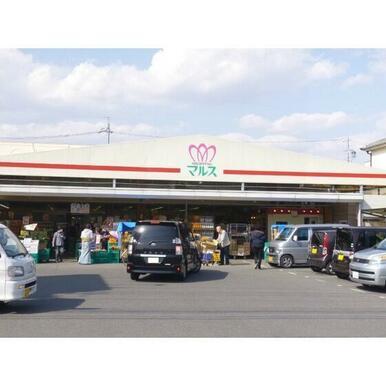 ショッピングマルス本店