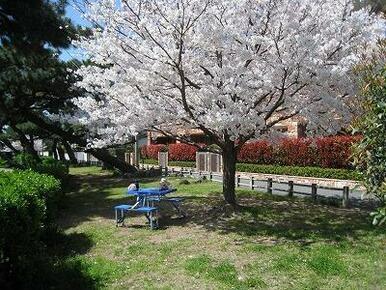小田部中央公園