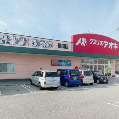 クスリのアオキ 鍋田店