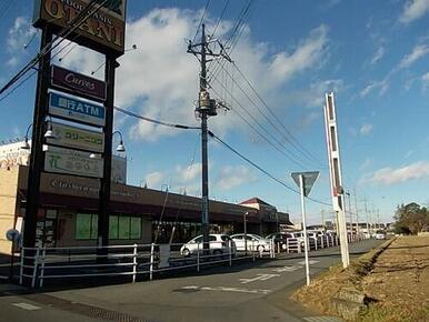 フードオアシスオータニ平松店