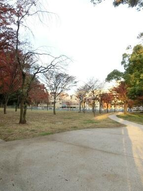 沢渡中央公園