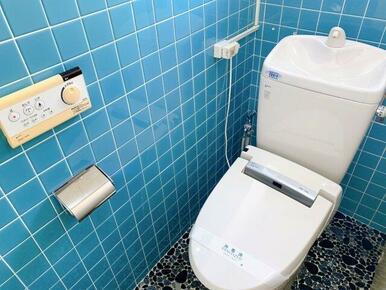 トイレは洋式と小便器用があります。