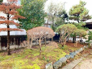 広縁から見える日本庭園です!