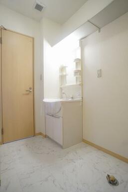 洗面所には忙しい朝の準備に便利なシャンプードレッサーが付いてます。上部に収納棚も設置しております。