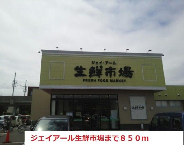 市場 新川 生鮮