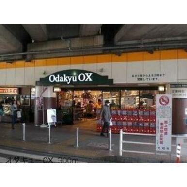 OdakyuOX大和店