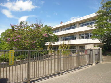 新石川小学校