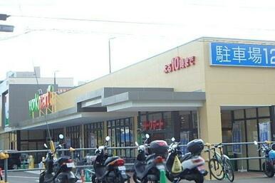 ヨークマート 戸塚深谷町店
