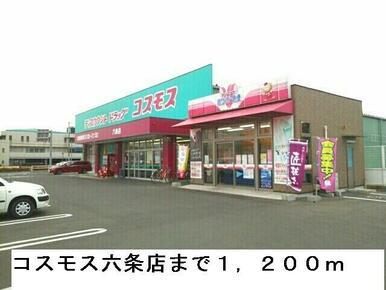 コスモス六条店