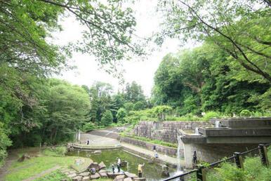 【忠生公園】 お散歩やお子様の遊び場としても嬉しい大きな公園が徒歩2分の距離に!