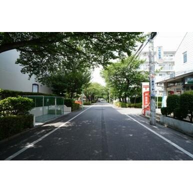 早稲田の街を南北に貫く早稲田のさくら並木は担当者のお気に入り徒歩ルート。夏は涼しく春は桜色のトンネル