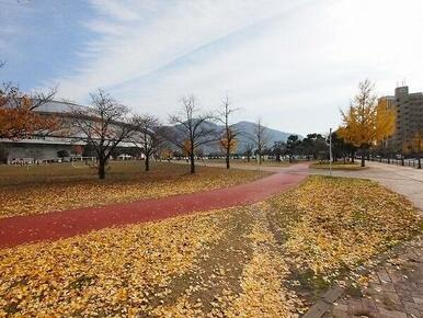 三萩野公園・メディアドーム