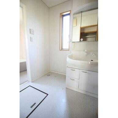 使いやすい三面鏡の中キャビネットには収納スペースもたっぷり。手入れしやすいシャワー機能付。