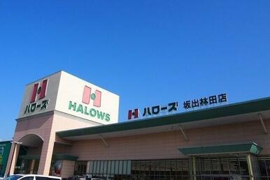 ハローズ坂出林田町店