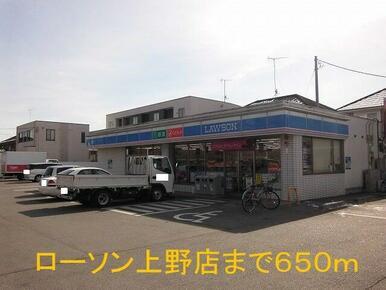 ローソン上野店