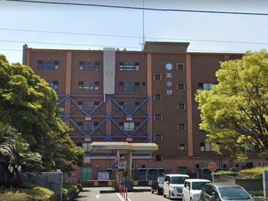 国立徳島大学薬学部