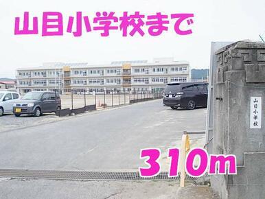 山目小学校
